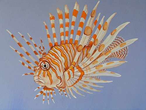 Scorpion Fish Drawing Scorpion Fish Sea Mural